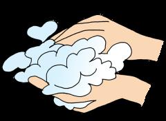 シャンプーの手順2|シャンプーを良く泡立てる