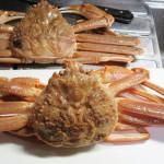 今時分が最盛期の蟹はいかがでしょう